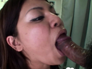 Prex brunette Asian gets shagged without mercy